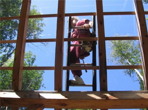 Tea House roof framing + Inglese on ladder