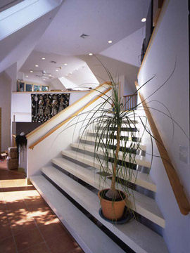 Hapgood residence studio stairs